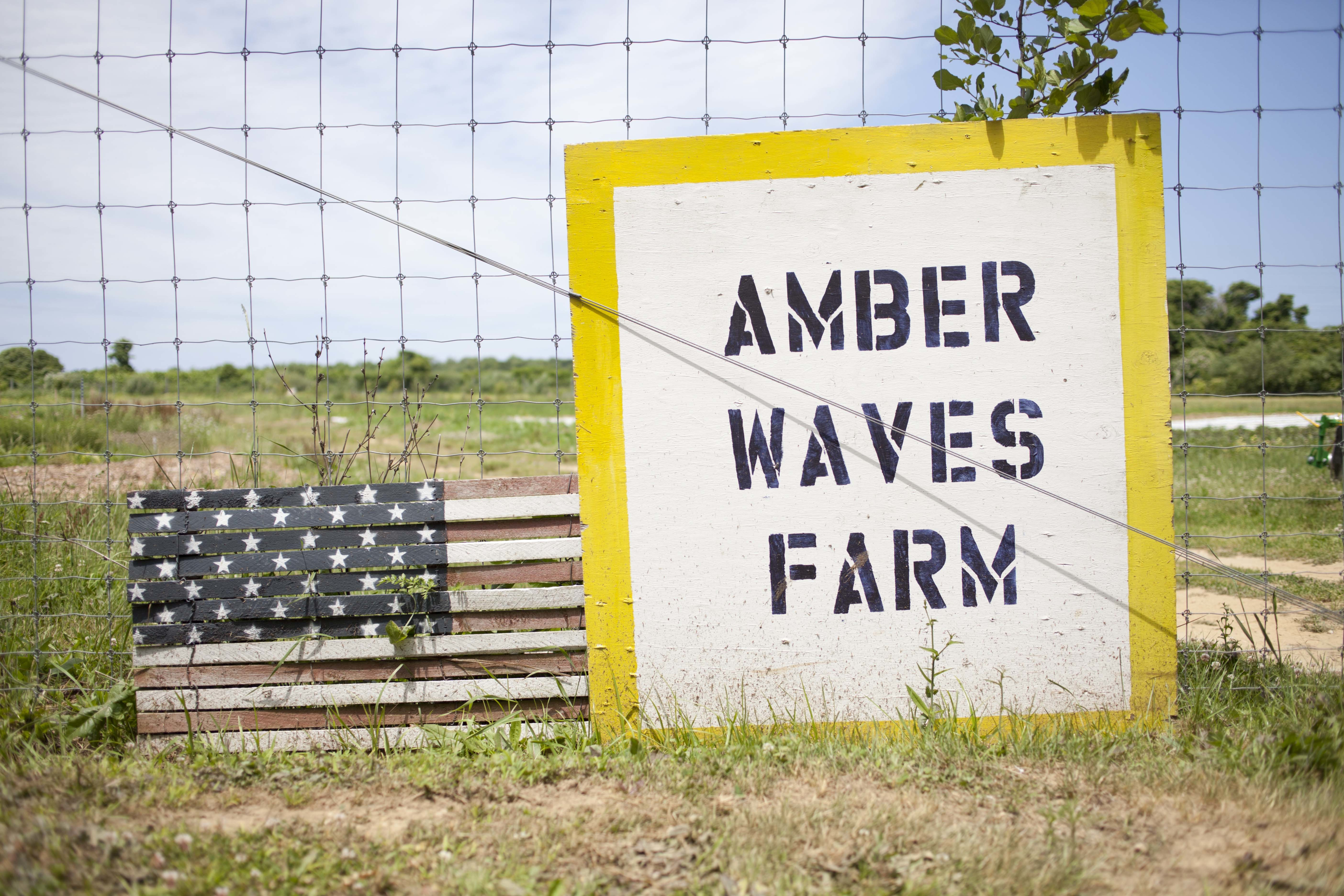 Amber Waves farm sign