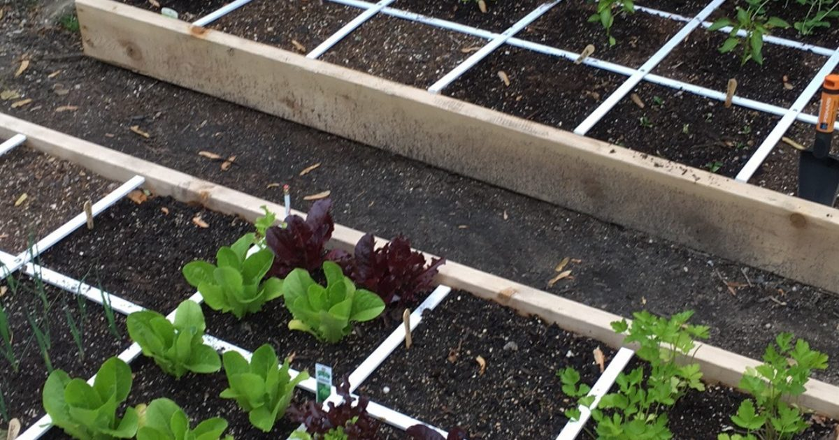Square Foot Gardening Workshop Peconic Land Trust