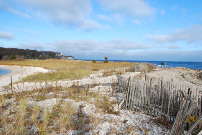 Beach and dunes at Reel Point Preserve