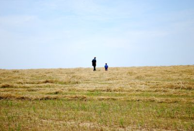 Farmfield with a father and son walking
